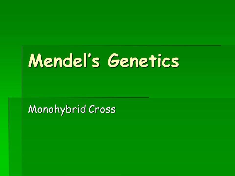 Gregor Mendel  As discussed last class, he was an Austrian monk  He worked at St.