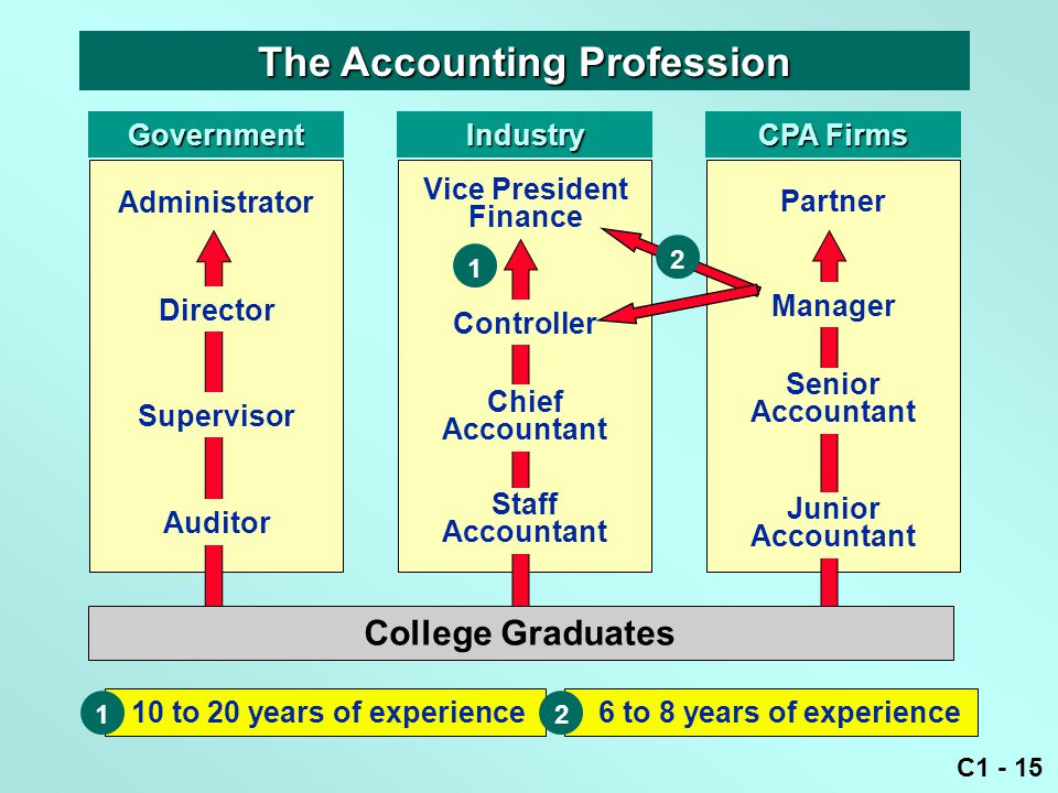 C1 - 15 10 to 20 years of experience 1 Government The Accounting Profession Administrator Industry Vice President Finance CPA Firms 1 6 to 8 years of experience 2 Chief Accountant Staff Accountant Controller Partner Manager Senior Accountant Junior Accountant 2 Director Supervisor Auditor College Graduates