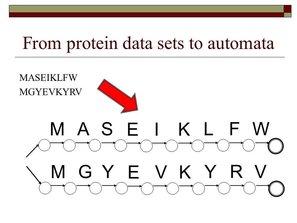 From protein data sets to automata MASEIKLFW MGYEVKYRV M G Y E V K Y R V M A S E I K L F W