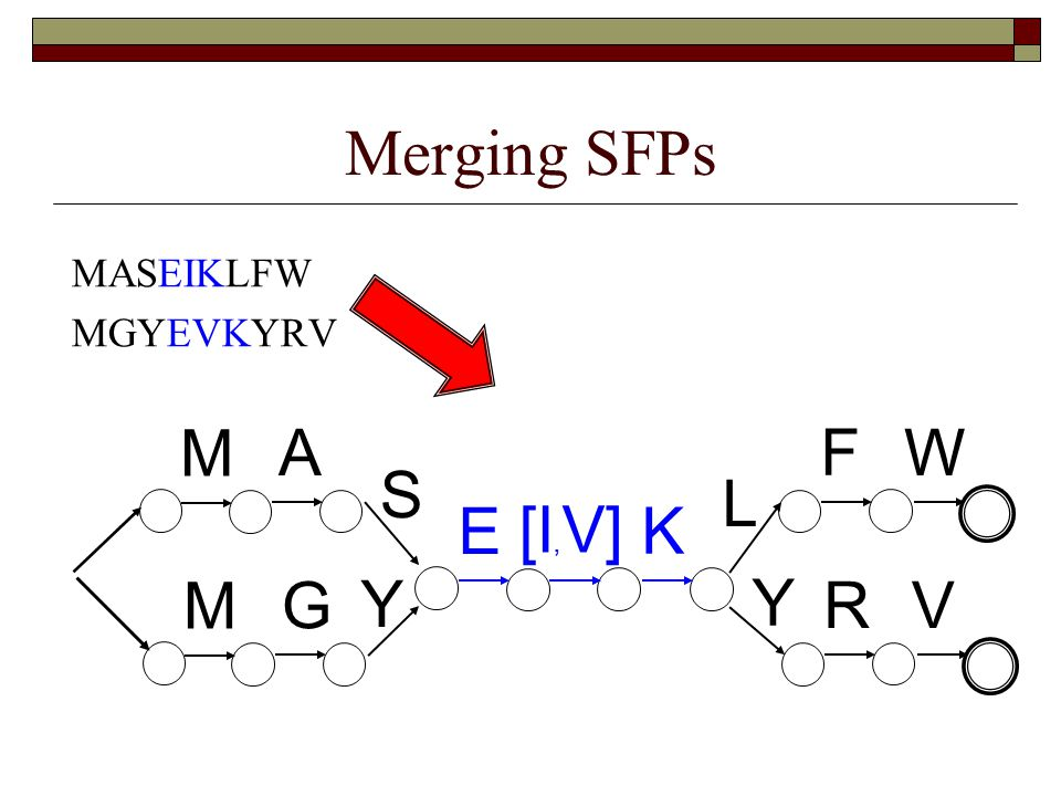 Merging SFPs MASEIKLFW MGYEVKYRV M G Y E K Y R V M A S L F W [I, V]