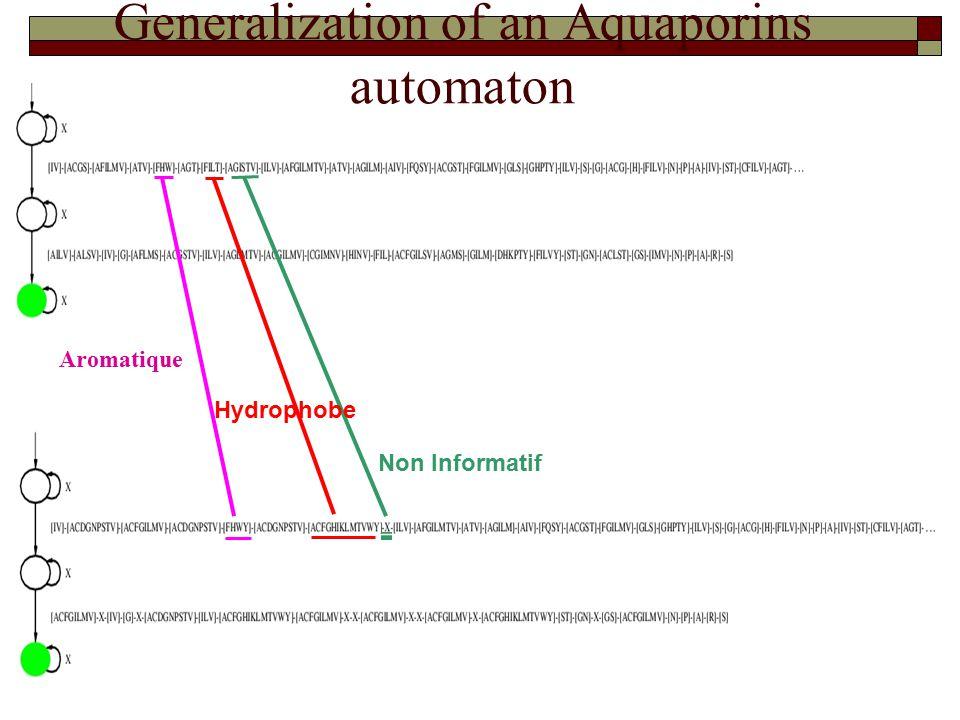Aromatique Hydrophobe Non Informatif Generalization of an Aquaporins automaton