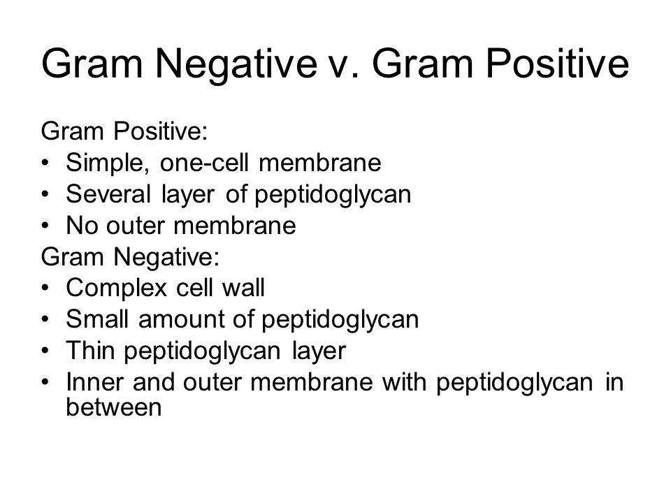 Gram Negative v.