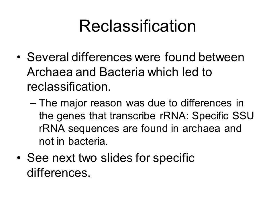 Ribosome Size: Archea and bacteria: 70S Eukarya: 80S