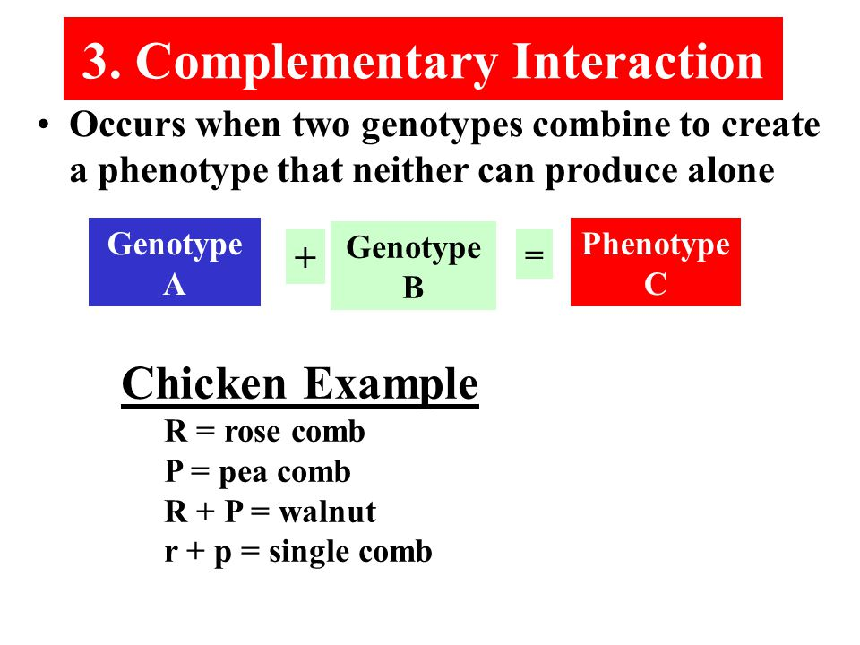 Occurs when two genotypes combine to create a phenotype that neither can produce alone 3.
