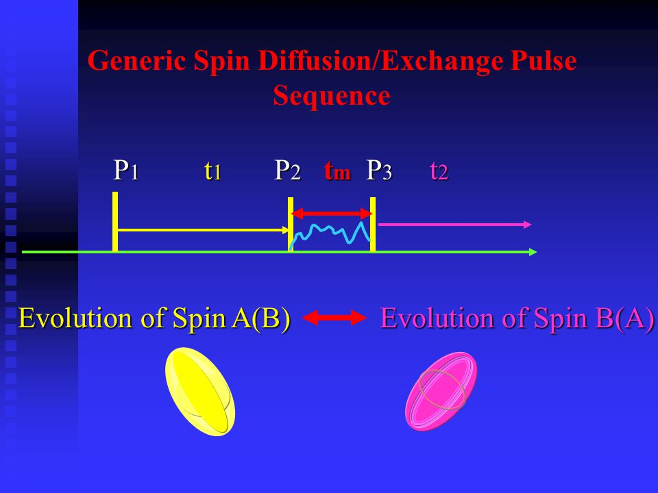 Generic Spin Diffusion/Exchange Pulse Sequence P 1 t 1 P 2 t m P 3 t 2 P 1 t 1 P 2 t m P 3 t 2 Evolution of Spin A(B) Evolution of Spin B(A)