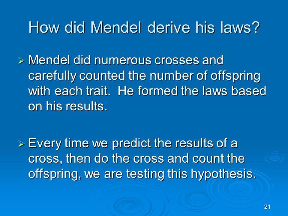 21 How did Mendel derive his laws.