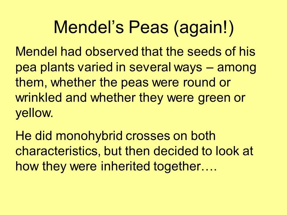Mendel's Peas (again!) Mendel had observed that the seeds of his pea plants varied in several ways – among them, whether the peas were round or wrinkled and whether they were green or yellow.