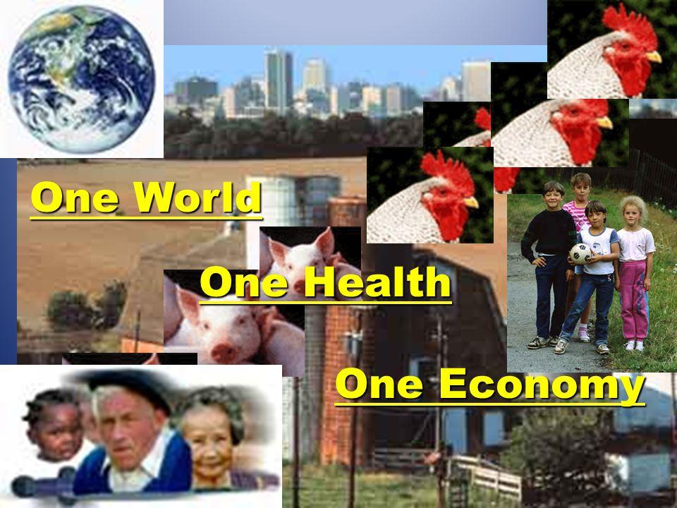 One World One Health One Economy