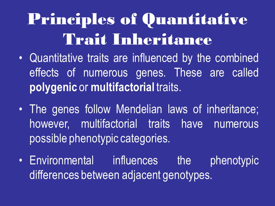 Principles of Quantitative Trait Inheritance Quantitative traits are influenced by the combined effects of numerous genes.