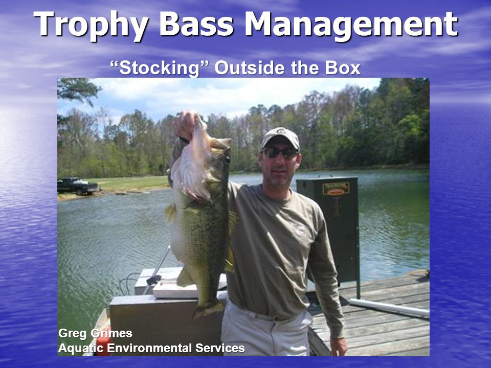 Fish List for Quality/Trophy Bass Stocking Bluegill Sunfish Redear Sunfish Fathead minnows Threadfin Shad Golden Shiners Crayfish Largemouth Bass(F1, Florida, Northern) Gizzard Shad Rainbow Trout Tilapia (if legal)