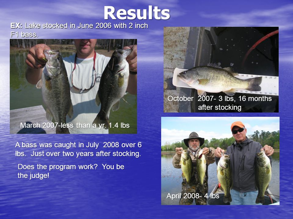 EX: Lake stocked in June 2006 with 2 inch F1 bass.