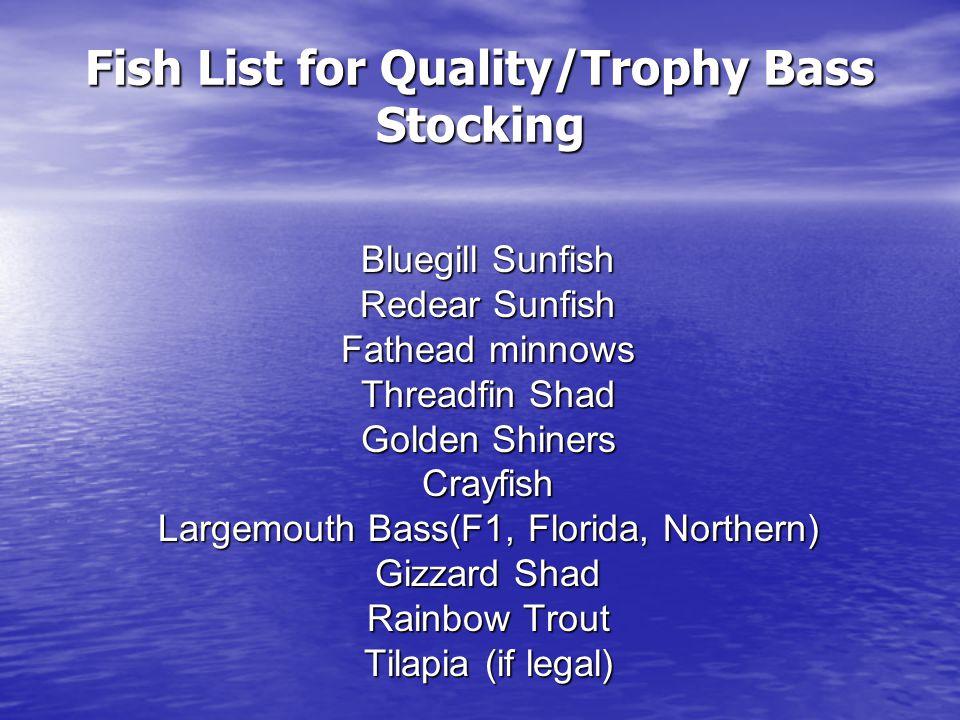 Class Size Distribution of Adult Largemouth Bass