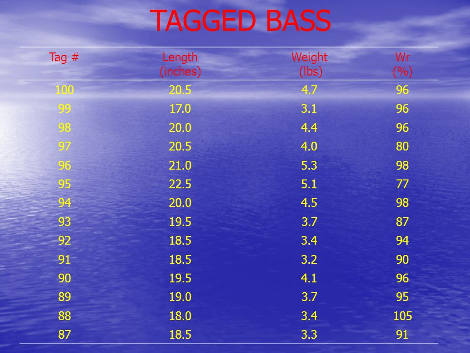 TAGGED BASS Tag #Length (inches) Weight (lbs) Wr (%) 10020.54.796 9917.03.196 9820.04.496 9720.54.080 9621.05.398 9522.55.177 9420.04.598 9319.53.787 9218.53.494 9118.53.290 19.54.196 8919.03.795 8818.03.4105 8718.53.391