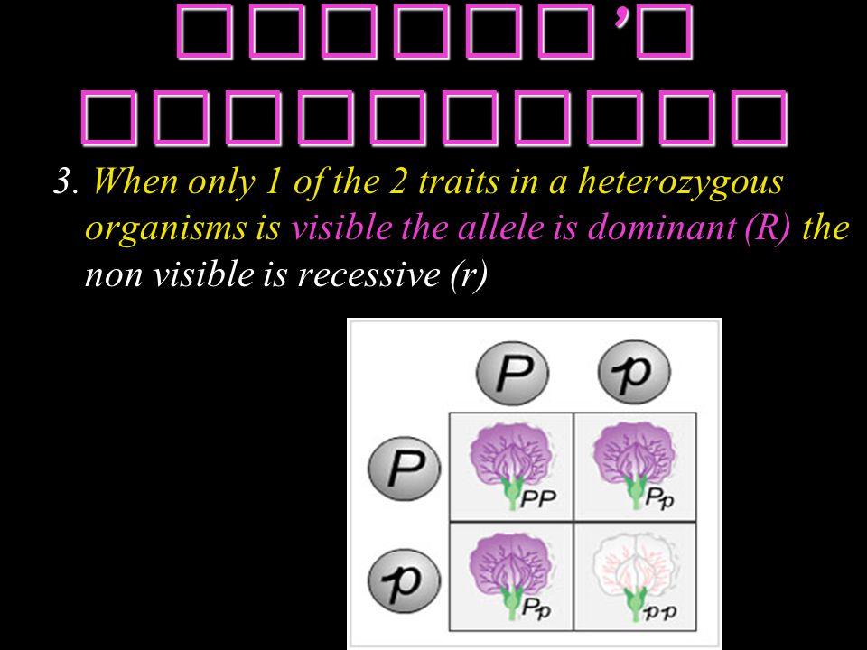 Mendel ' s Hypotheses 3.