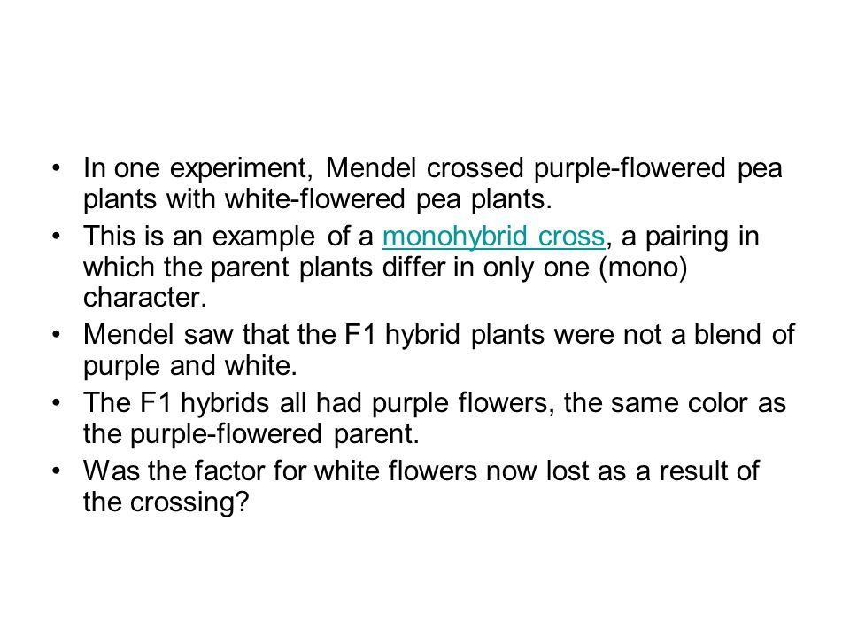 In one experiment, Mendel crossed purple-flowered pea plants with white-flowered pea plants. This is an example of a monohybrid cross, a pairing in wh