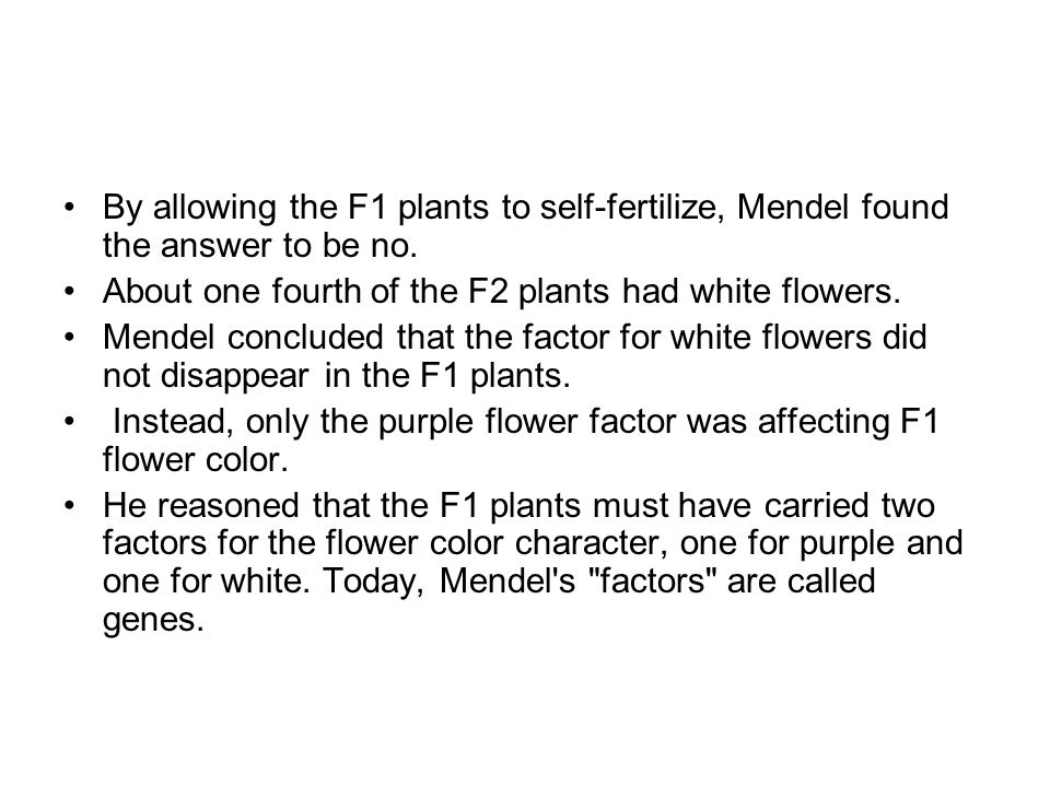 By allowing the F1 plants to self-fertilize, Mendel found the answer to be no. About one fourth of the F2 plants had white flowers. Mendel concluded t