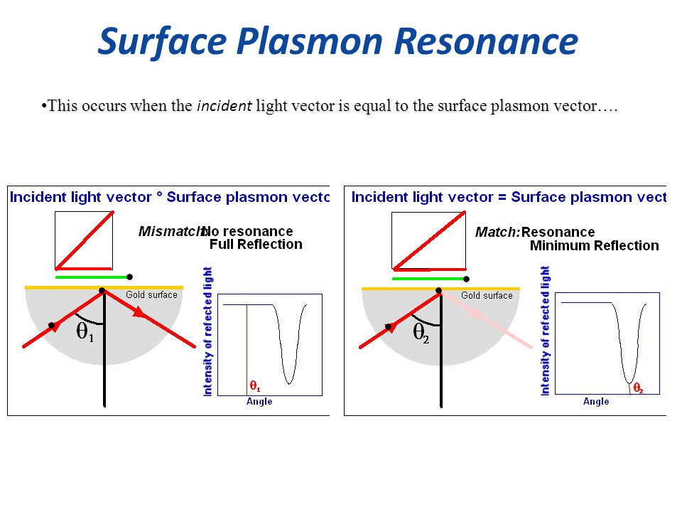 Surface Plasmon Resonance This occurs when the light vector is equal to the surface plasmon vector….This occurs when the incident light vector is equal to the surface plasmon vector….