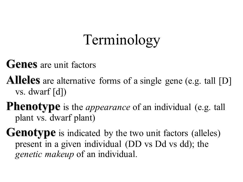 Terminology Genes Genes are unit factors Alleles Alleles are alternative forms of a single gene (e.g.