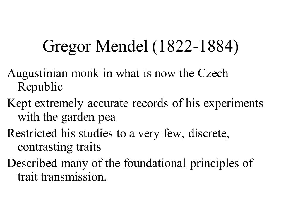 Gregor Mendel (1822-1884) Augustinian monk in what is now the Czech Republic Kept extremely accurate records of his experiments with the garden pea Restricted his studies to a very few, discrete, contrasting traits Described many of the foundational principles of trait transmission.