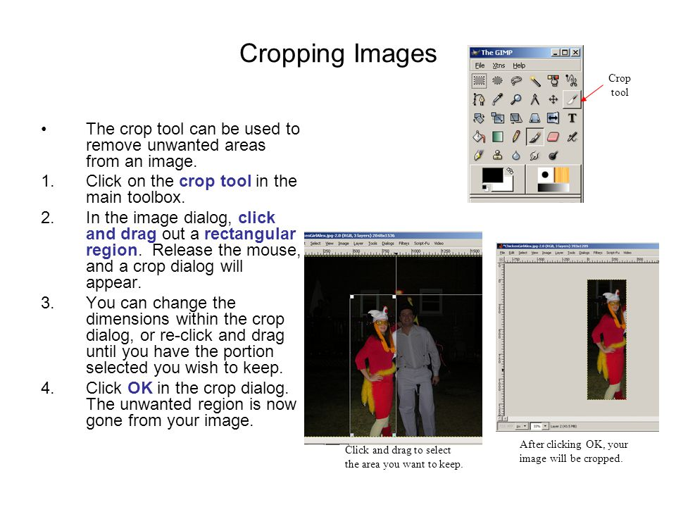 Cropping Images The crop tool can be used to remove unwanted areas from an image.