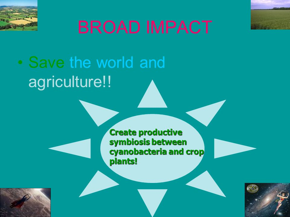 BROAD IMPACT Save the world and revolutionize agriculture!.