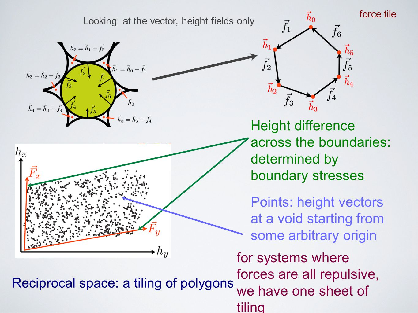 Looking at the vector, height fields only Height difference across the boundaries: determined by boundary stresses Points: height vectors at a void st