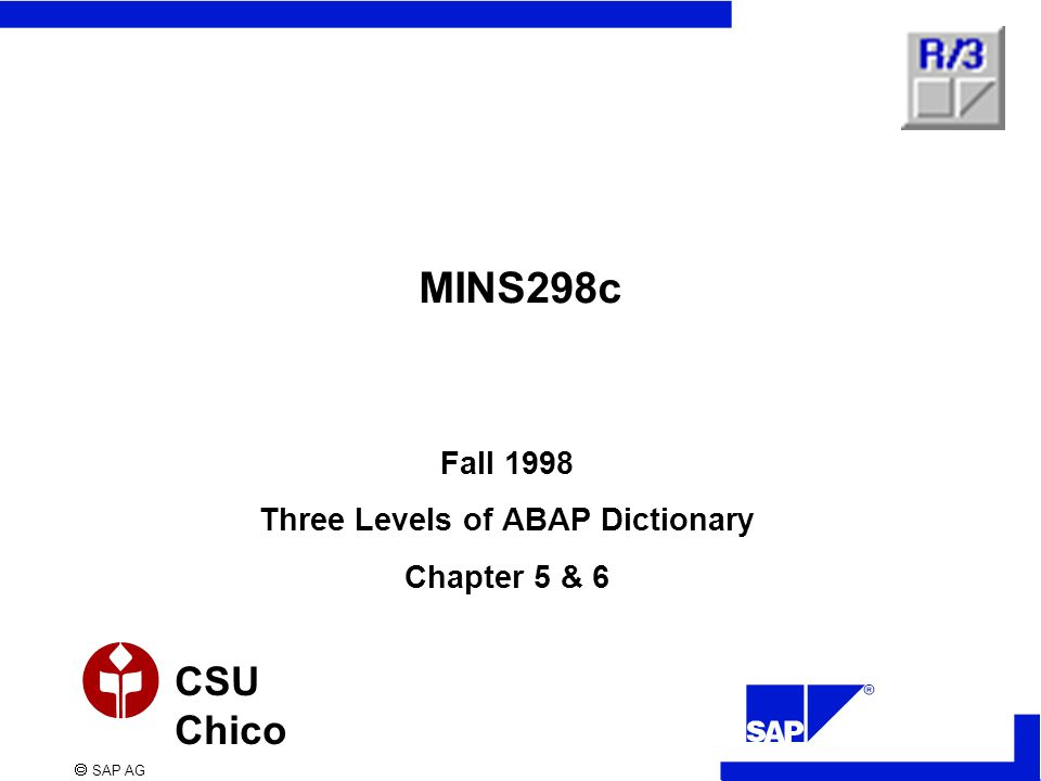  SAP AG CSU Chico MINS298c Fall 1998 Three Levels of ABAP Dictionary Chapter 5 & 6
