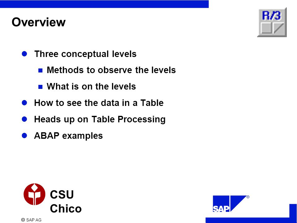  SAP AG CSU Chico Overview Three conceptual levels Methods to observe the levels What is on the levels How to see the data in a Table Heads up on Tab