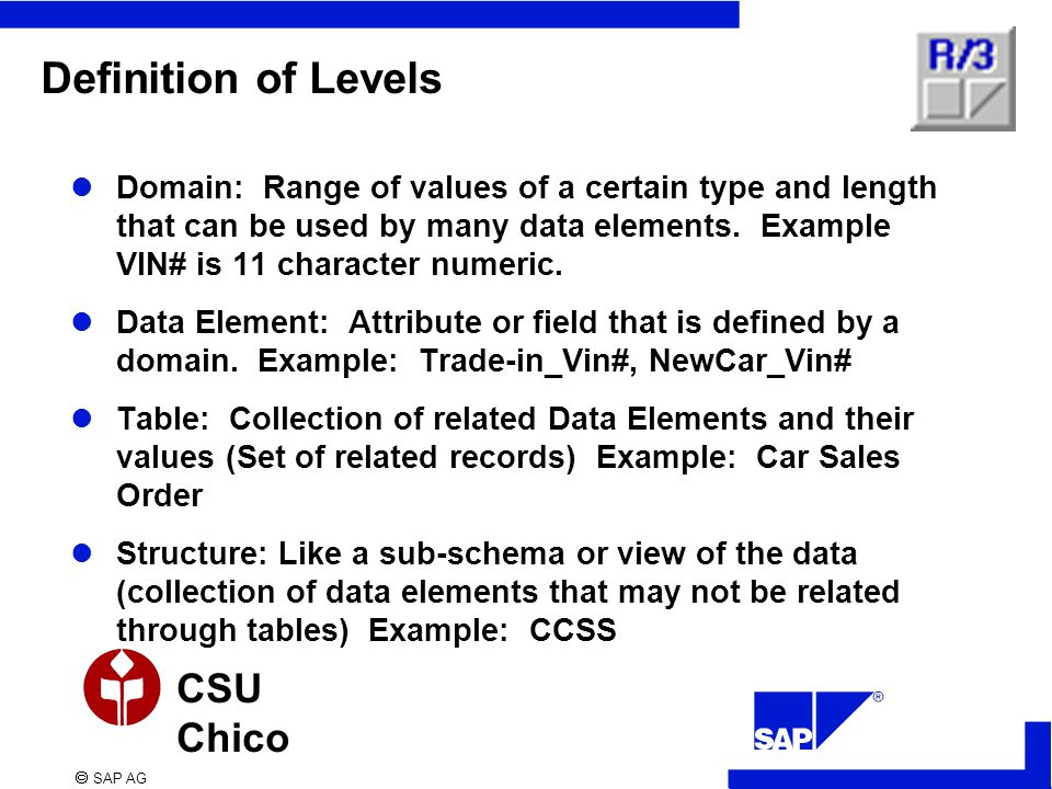  SAP AG CSU Chico Definition of Levels Domain: Range of values of a certain type and length that can be used by many data elements.