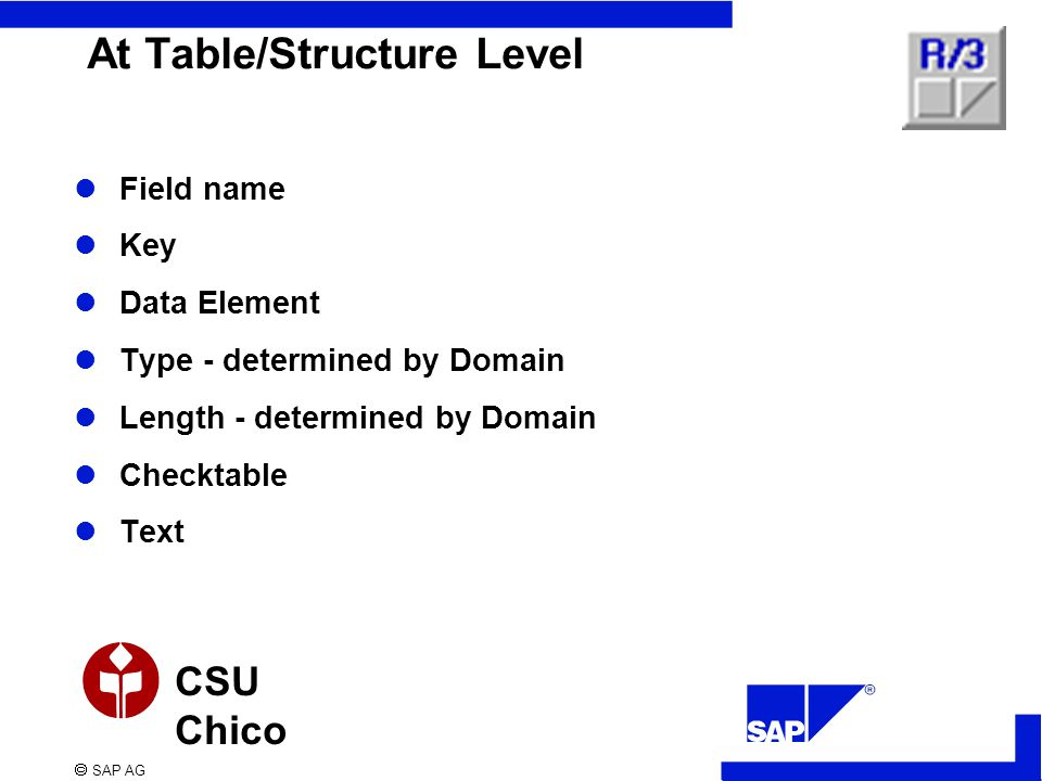  SAP AG CSU Chico At Table/Structure Level Field name Key Data Element Type - determined by Domain Length - determined by Domain Checktable Text
