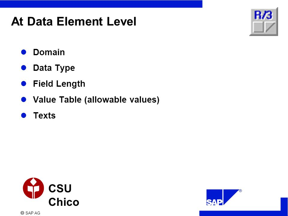  SAP AG CSU Chico At Data Element Level Domain Data Type Field Length Value Table (allowable values) Texts