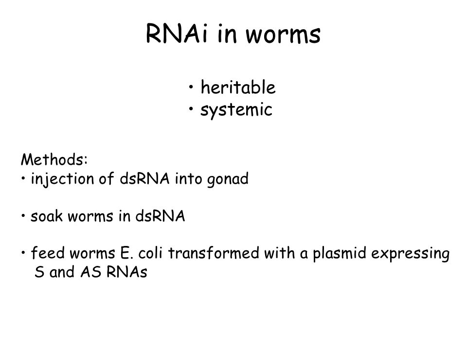 RNAi in worms heritable systemic Methods: injection of dsRNA into gonad soak worms in dsRNA feed worms E. coli transformed with a plasmid expressing S