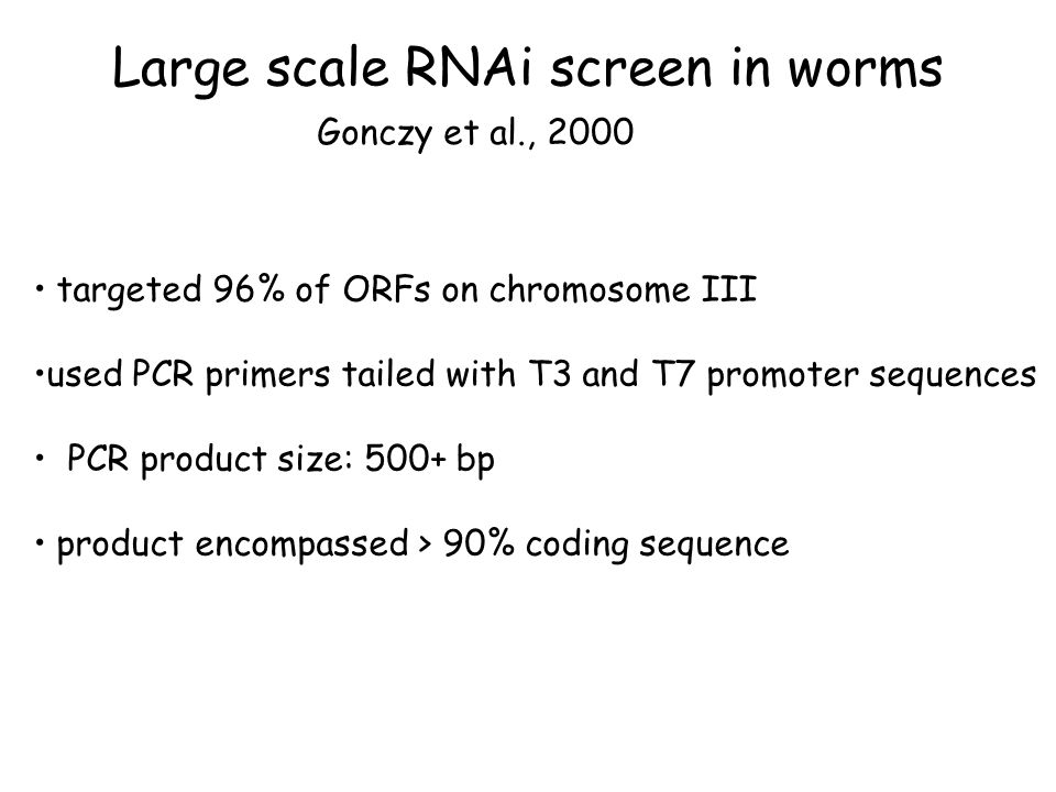 Large scale RNAi screen in worms Gonczy et al., 2000 targeted 96% of ORFs on chromosome III used PCR primers tailed with T3 and T7 promoter sequences