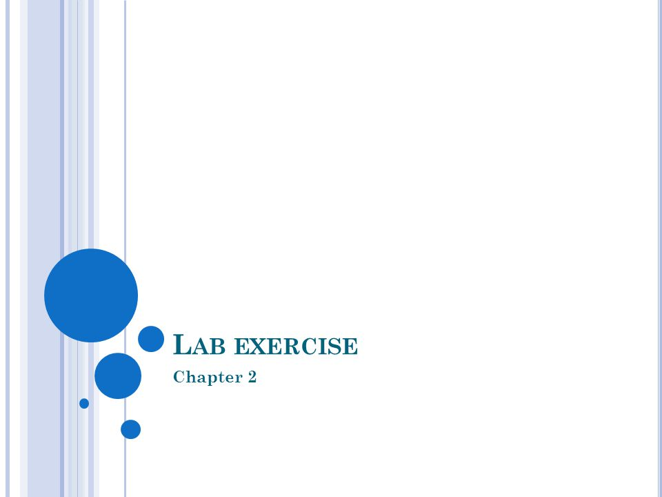 L AB EXERCISE Chapter 2