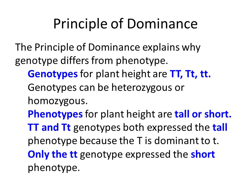 Principle of Dominance The Principle of Dominance explains why genotype differs from phenotype. Genotypes for plant height are TT, Tt, tt. Genotypes c