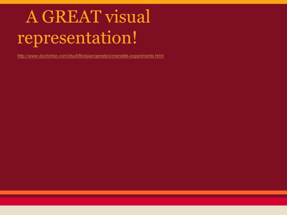A GREAT visual representation! http://www.doctortee.com/dsu/tiftickjian/genetics/mendels-experiments.html