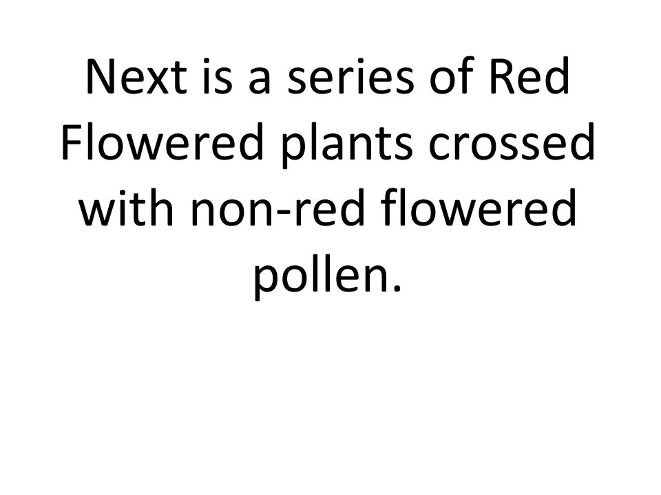 Next is a series of Red Flowered plants crossed with non-red flowered pollen.
