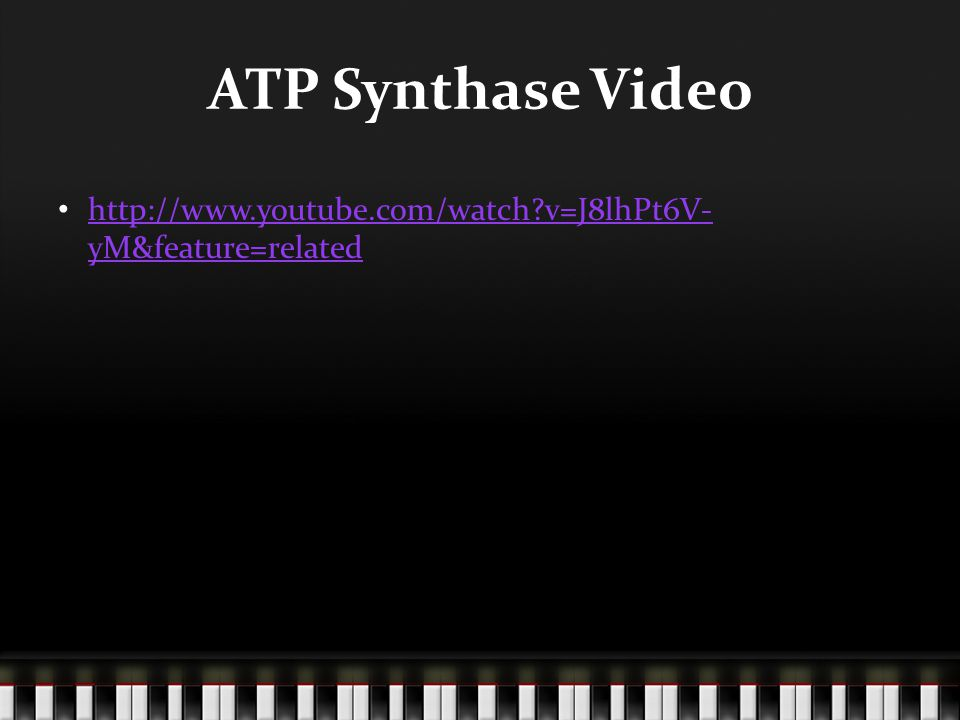 ATP Synthase Video http://www.youtube.com/watch v=J8lhPt6V- yM&feature=related http://www.youtube.com/watch v=J8lhPt6V- yM&feature=related