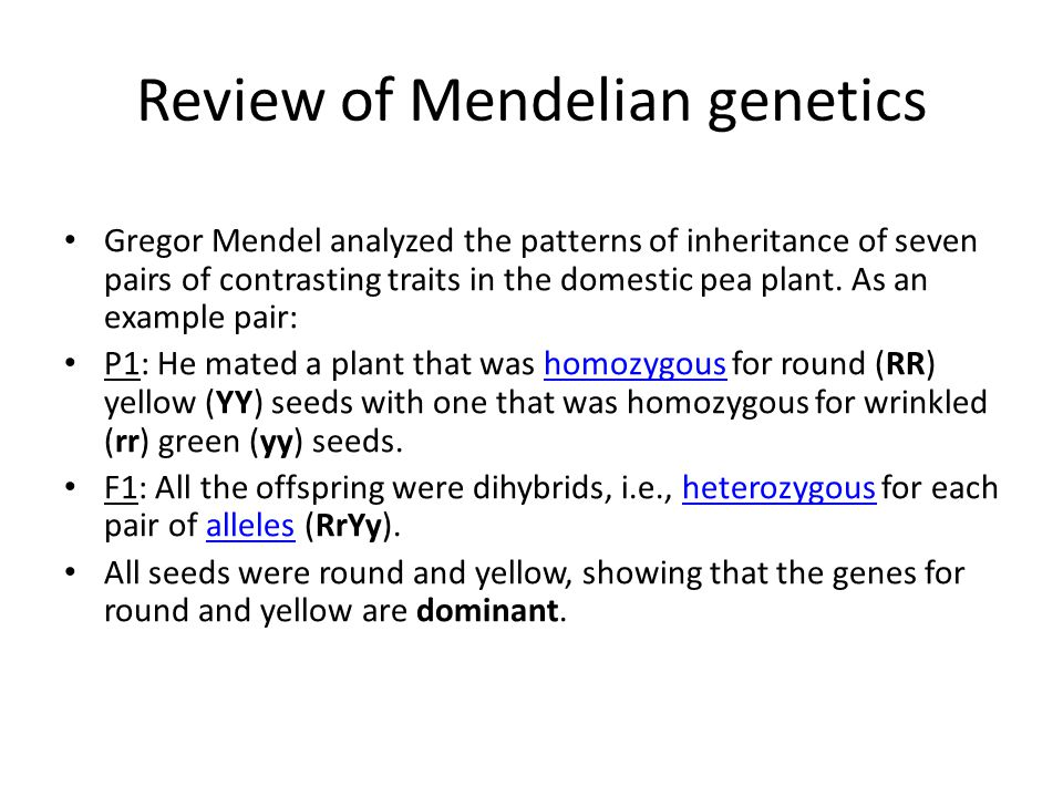 Review of Mendelian genetics Gregor Mendel analyzed the patterns of inheritance of seven pairs of contrasting traits in the domestic pea plant. As an