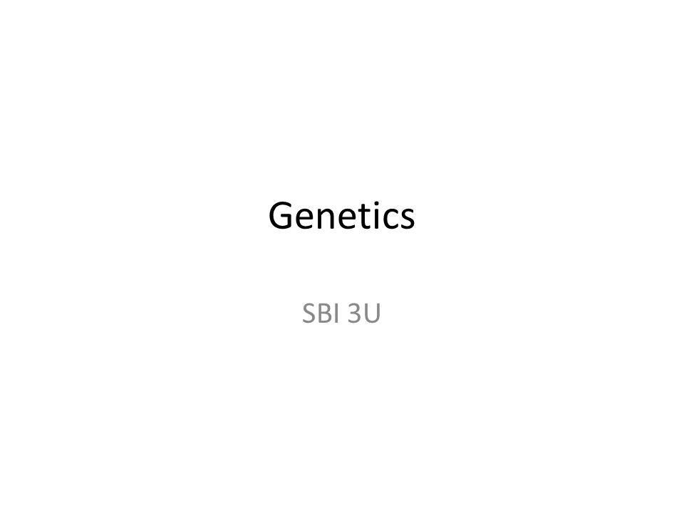 Genetics SBI 3U
