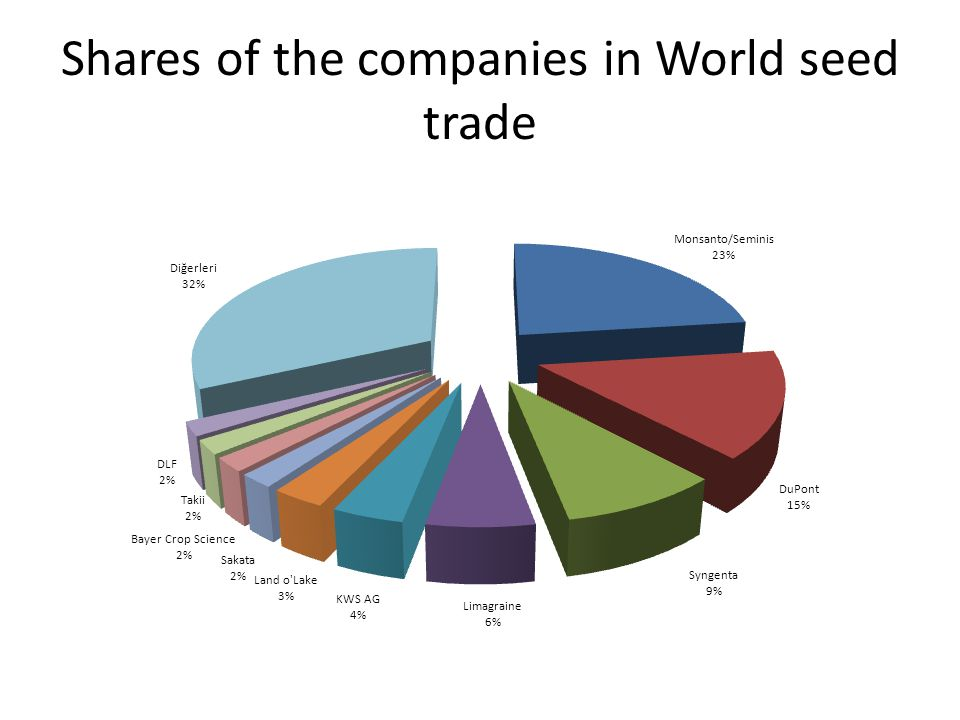 Shares of the companies in World seed trade