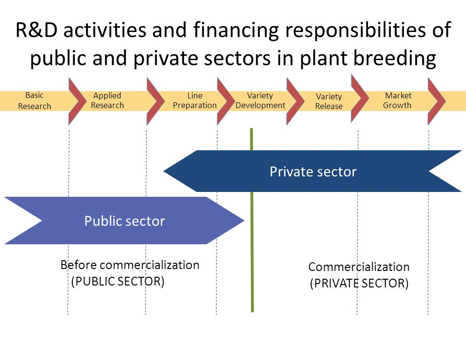 Basic Research Applied Research Line Preparation Variety Development Variety Release R&D activities and financing responsibilities of public and private sectors in plant breeding Market Growth Commercialization (PRIVATE SECTOR) Before commercialization (PUBLIC SECTOR) Private sector Public sector