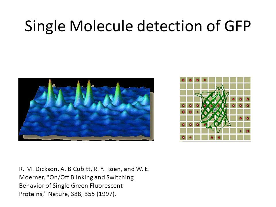 Single Molecule detection of GFP R. M. Dickson, A.