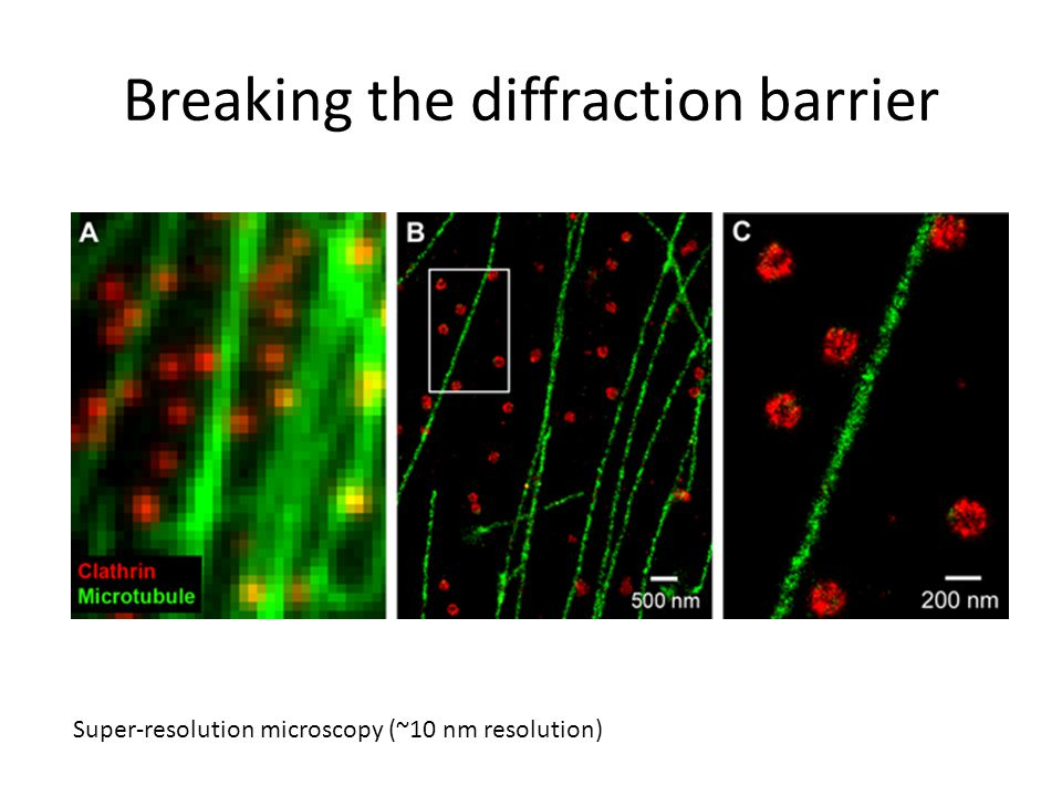Breaking the diffraction barrier Super-resolution microscopy (~10 nm resolution)