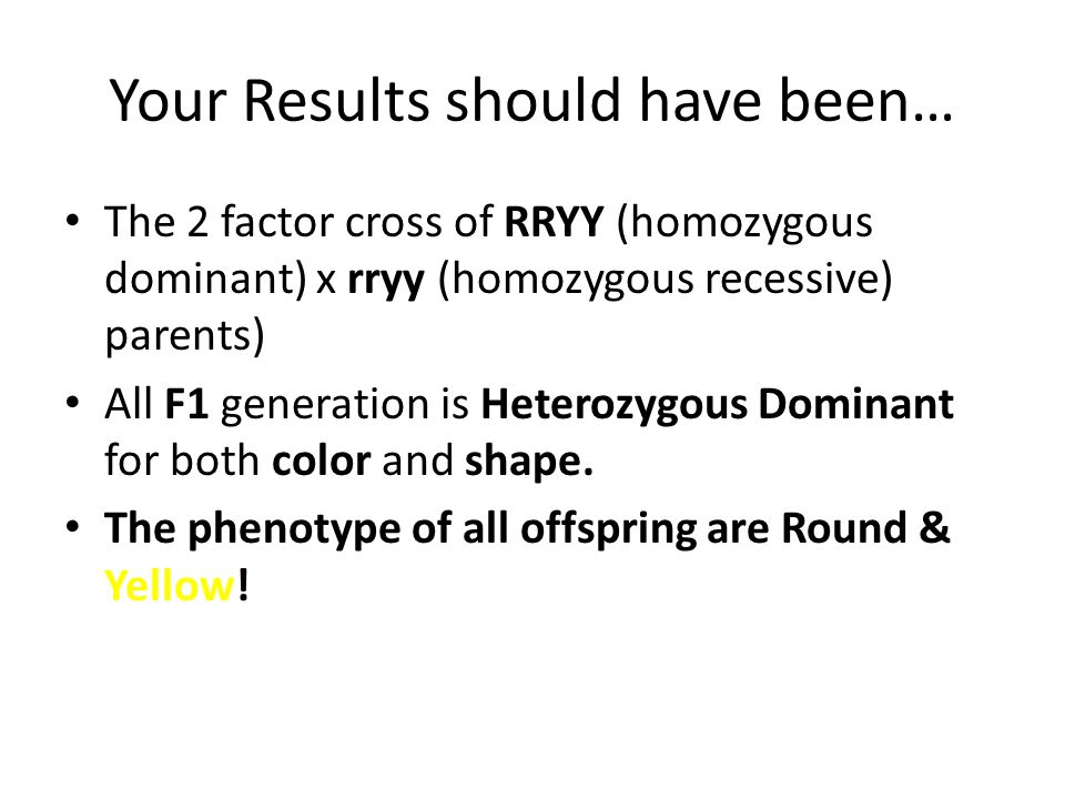Your Results should have been… The 2 factor cross of RRYY (homozygous dominant) x rryy (homozygous recessive) parents) All F1 generation is Heterozygo
