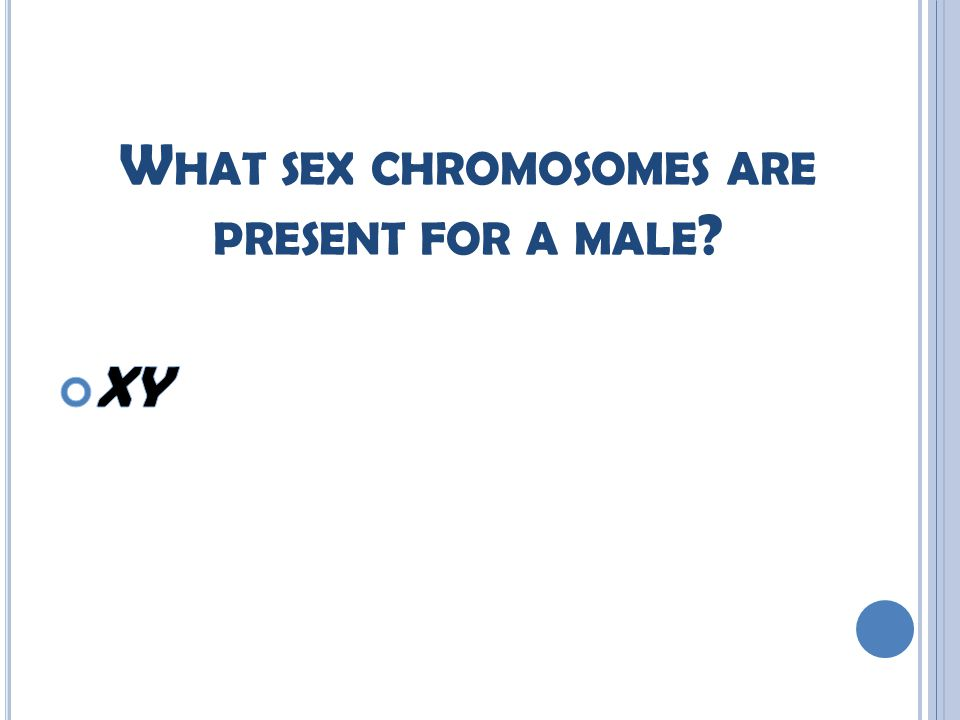 W HAT SEX CHROMOSOMES ARE PRESENT FOR A MALE