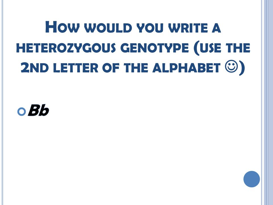 H OW WOULD YOU WRITE A HETEROZYGOUS GENOTYPE ( USE THE 2 ND LETTER OF THE ALPHABET )