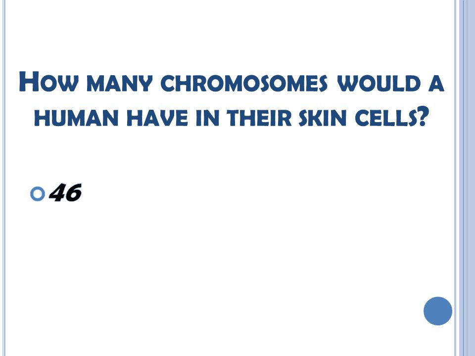 H OW MANY CHROMOSOMES WOULD A HUMAN HAVE IN THEIR SKIN CELLS