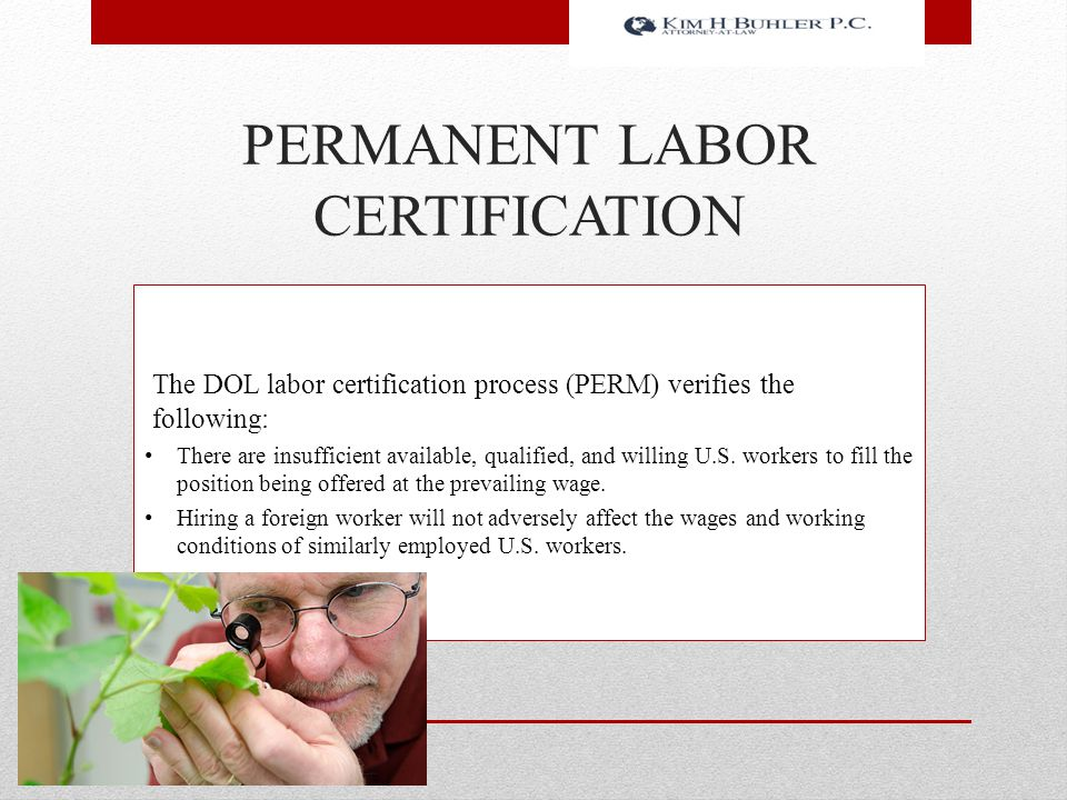 PERMANENT LABOR CERTIFICATION The DOL labor certification process (PERM) verifies the following: There are insufficient available, qualified, and will