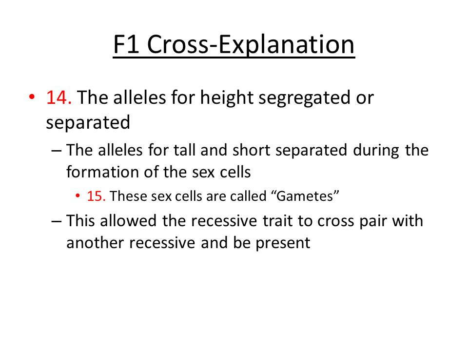 F1 Cross-Explanation 14. The alleles for height segregated or separated – The alleles for tall and short separated during the formation of the sex cel
